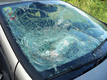Laminated glass is a type of safety glass