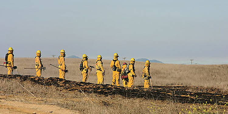 Lakeland Fire's wildland PPE also serves as technical rescue gear using a TenCate Defender M Gold shell fabric.